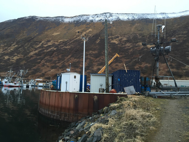 Photo of station #9459881, King Cove, AK