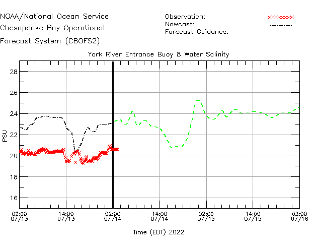 York River Entrance Buoy 8 Salinity Time Series Plot