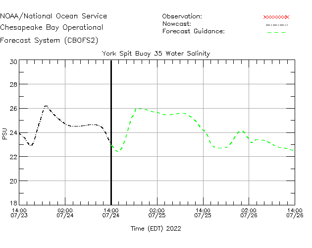 York Spit Buoy 35 Salinity Time Series Plot