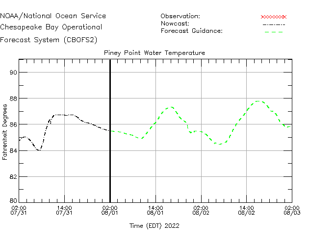Piney Point Water Temperature Time Series Plot