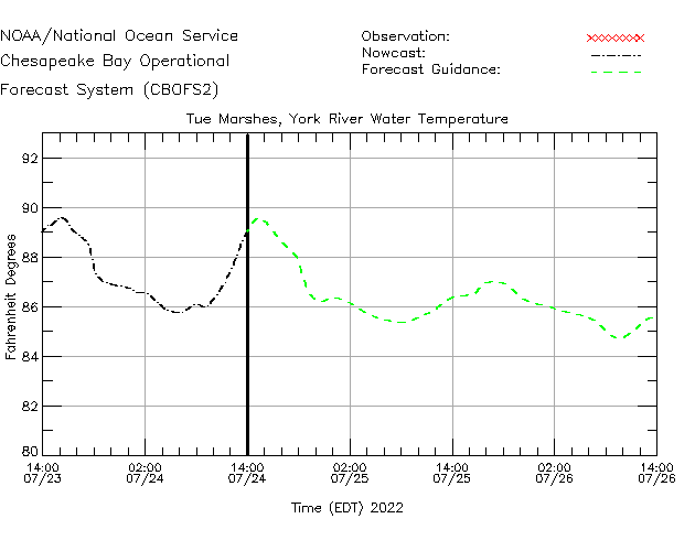Tue Marshes - York River Water Temperature Time Series Plot