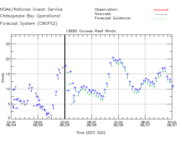 CBIBS Gooses Reef Winds Time Series Plot